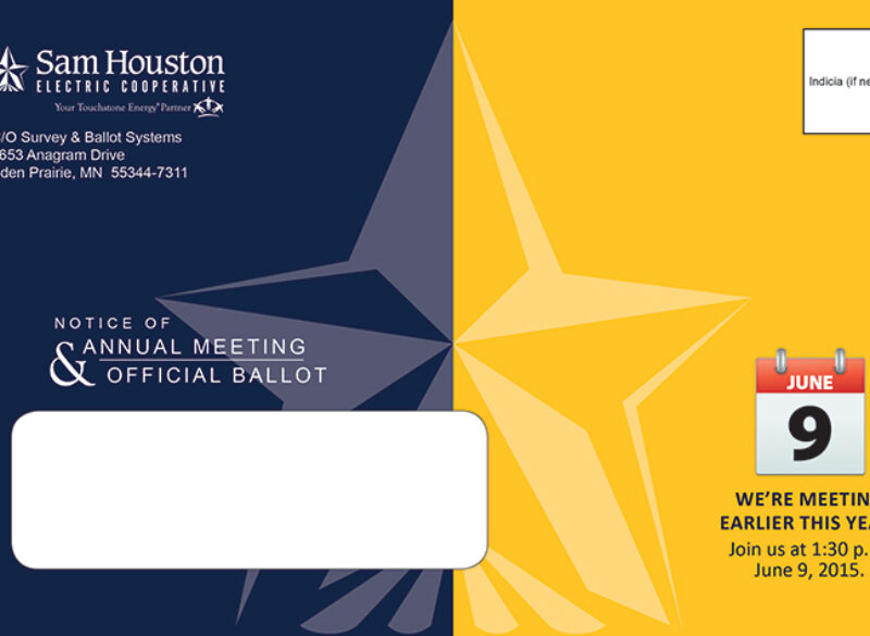 Look for Your Director Election Ballot