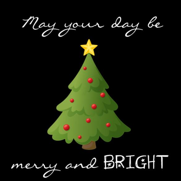 Merry Christmas From Sam Houston EC!